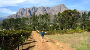 Staying on a vineyard in Stellenbosch